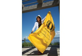 "35"" x 70"" Platinum Heavyweight Colored Beach Towel"
